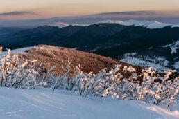 warsztaty fotograficzne w Bieszczadach blask wschodzącego słońca oświetla ośnieżone połoniny i lasy, widok z Małej Rawki