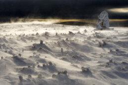 warsztaty fotograficzne w Bieszczadach zawiane połoniny śniegiem zimową porą