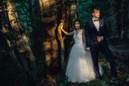 sesja w lesie w Bieszczadach para młoda trzyma się za ręce ona oparta o drzewo skąpane w plasku słońca